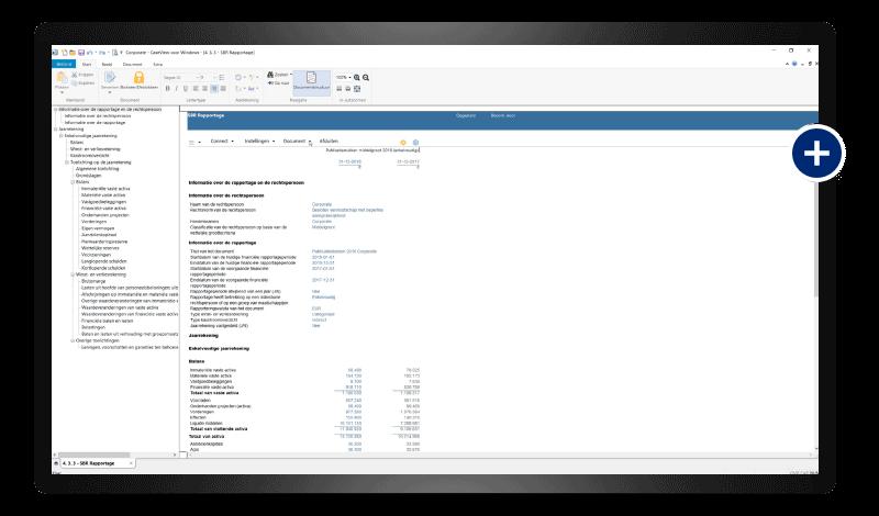 CaseWare Business - SBR jaarrekening screenshot
